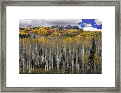 Colorado Splendor Framed Print
