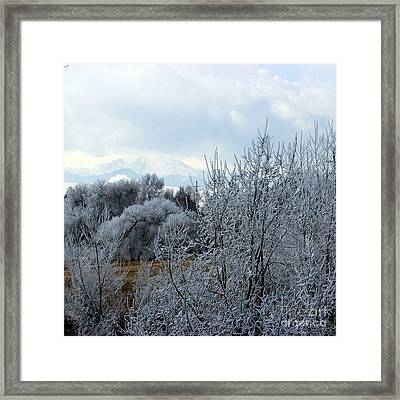 Colorado Springs Winter Framed Print