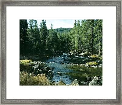 Colorado Stream1 Framed Print