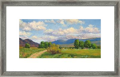 Colorado Summer Framed Print by Bunny Oliver
