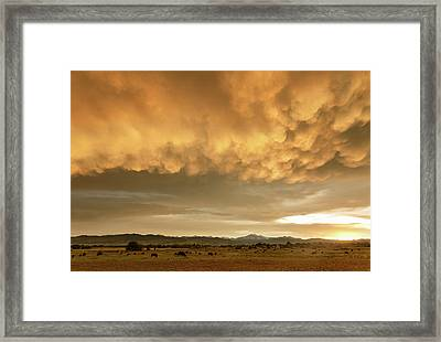 Colorado Sunset Stormin Framed Print by James BO Insogna