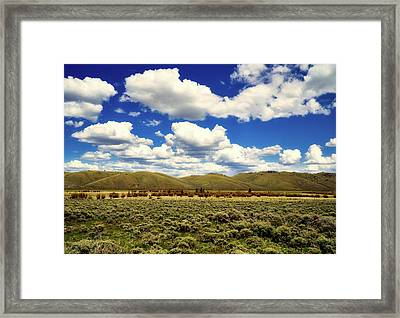Colorado Vista Framed Print by L O C