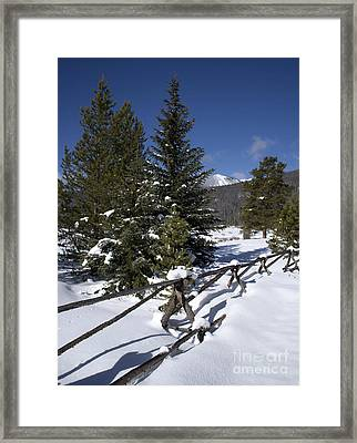 Colorado Winter Wonderland Framed Print