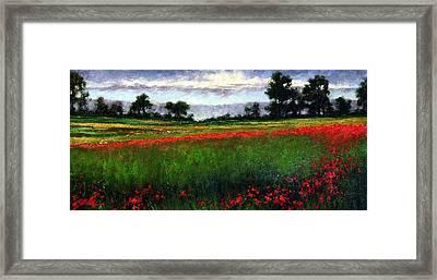 Colorburst Framed Print by Jim Gola