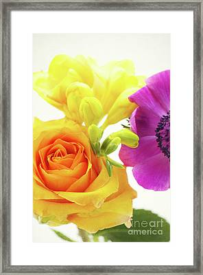 Colored Flowers Framed Print by Angela Doelling AD DESIGN Photo and PhotoArt