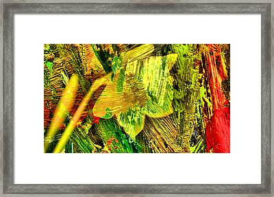 Colored Daffodil Abstract Framed Print by Jeff Swan