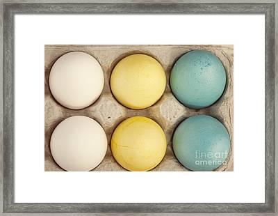 Colored Eggs Framed Print by Juli Scalzi