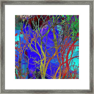 Framed Print featuring the photograph Colored Tree Branches by Susan Stone