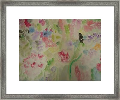 Colorful  001 Framed Print