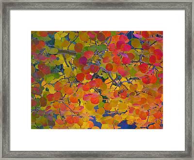 Colorful Aspen Framed Print