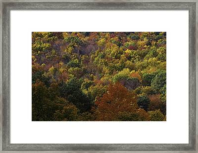 Colorful Autumn Hillside Framed Print by Garry Gay