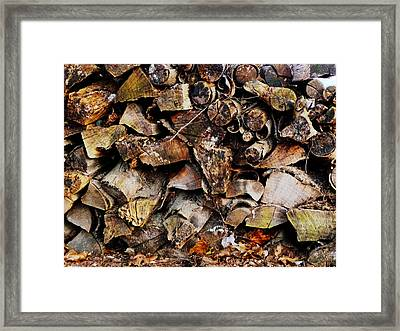 Colorful Autumn Logs Framed Print by Margie Avellino