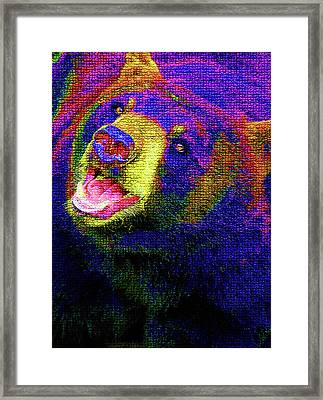 Colorful Bear Framed Print by Karol Livote
