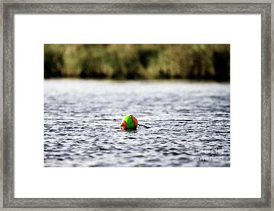 Colorful Bouy Framed Print by Scott Pellegrin