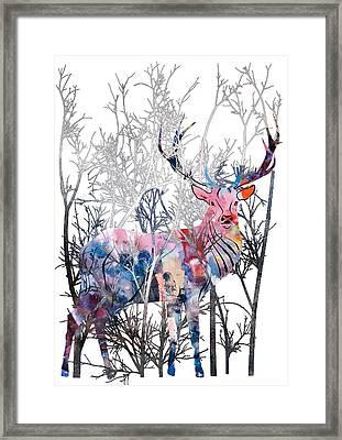 Colorful Buck Framed Print by Diana Van