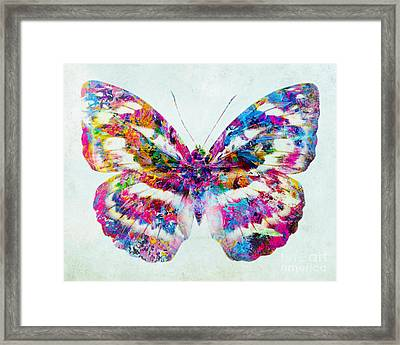 Colorful Butterfly Art Framed Print