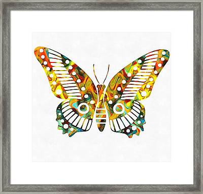 Colorful Butterfuly Framed Print by Dan Sproul