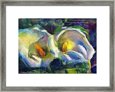 Colorful Calla Flowers Painting By Framed Print