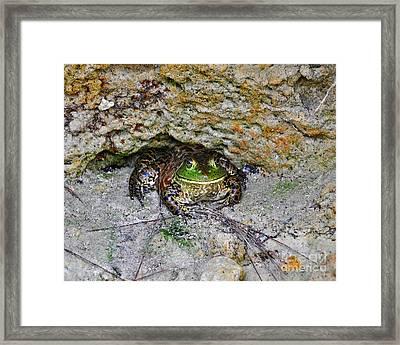 Colorful Camo Framed Print