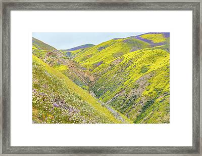 Framed Print featuring the photograph Colorful Canyon by Marc Crumpler