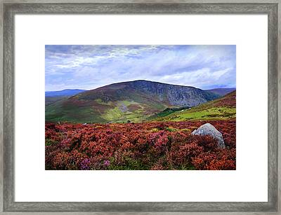 Framed Print featuring the photograph Colorful Carpet Of Wicklow Hills by Jenny Rainbow