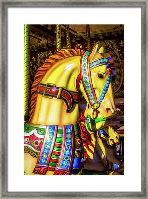Colorful Carrousel Horse Ride Framed Print