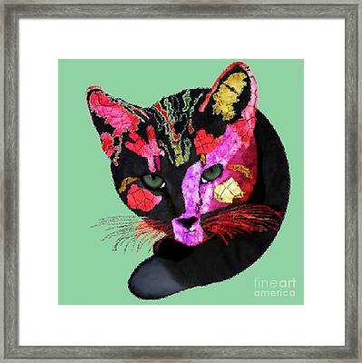 Colorful Cat Abstract Artwork By Claudia Ellis Framed Print by Claudia Ellis