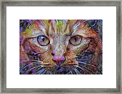 Colorful Cat Art Framed Print by Peggy Collins