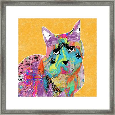 Colorful Cat With An Attitude- Art By Linda Woods Framed Print by Linda Woods
