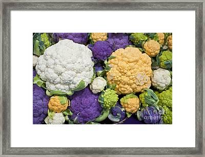 Colorful Cauliflower Framed Print