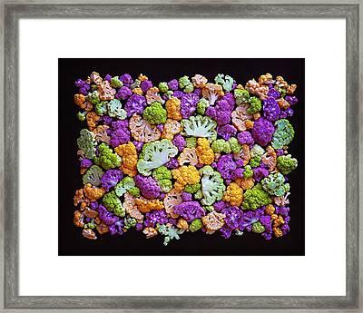 Colorful Cauliflower Mosaic Framed Print