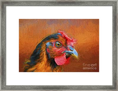 Colorful Chicken Framed Print by Darren Fisher
