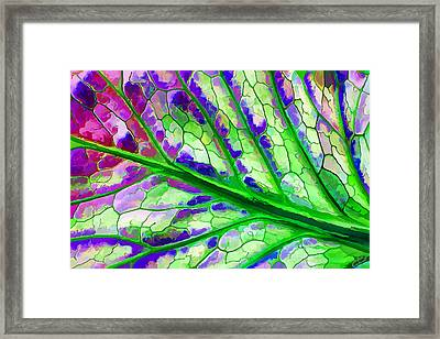 Colorful Coleus Abstract 4 Framed Print by ABeautifulSky Photography
