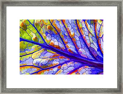 Colorful Coleus Abstract 6 Framed Print by ABeautifulSky Photography