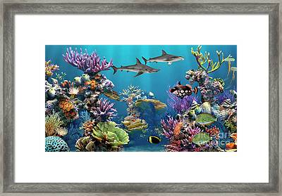 Colorful Coral Reef Framed Print
