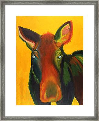 Colorful Cow Framed Print by Amy Reisland-Speer