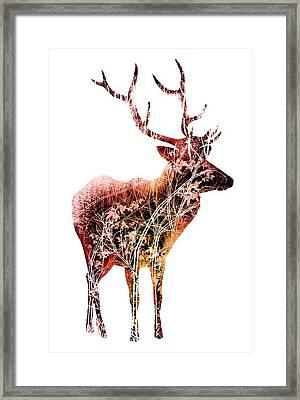 Colorful Deer Art  Framed Print by Diana Van