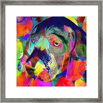 Colorful Dog Framed Print