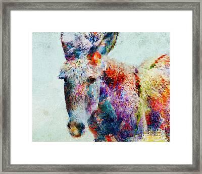 Colorful Donkey Art Framed Print