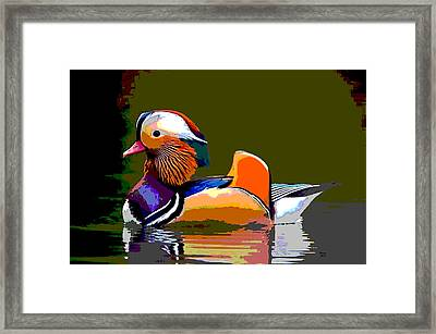 Colorful Duck Framed Print