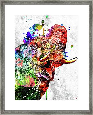 Colorful Elephant Framed Print by Daniel Janda