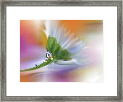 Colorful Explosion... Framed Print by Juliana Nan