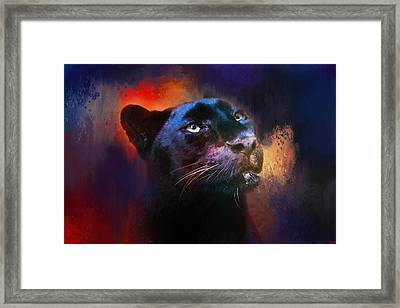 Colorful Expressions Black Leopard Framed Print by Jai Johnson