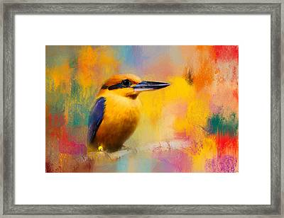 Colorful Expressions Kingfisher Framed Print by Jai Johnson