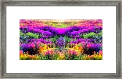 Colorful Field Of A Lavender Framed Print by Anton Kalinichev