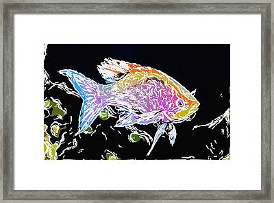 Colorful Fish 1 Framed Print