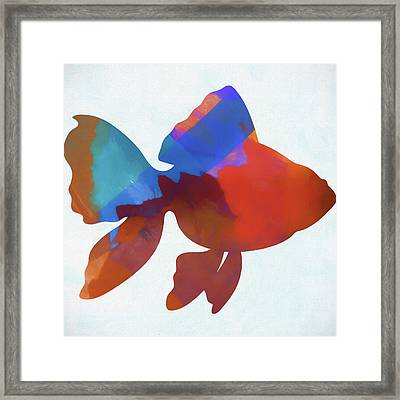 Colorful Fish Framed Print by Dan Sproul