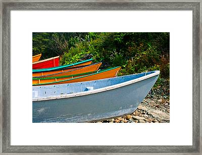 Colorful Fishing Boats On A Rocky Shore  Grand Manan Framed Print by Thomas Marchessault