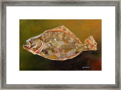 Colorful Flounder Framed Print by Phyllis Beiser