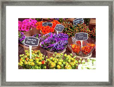 Colorful Flowers Display Framed Print by Jenny Rainbow